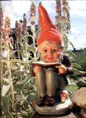 Gnome reading a book.  From